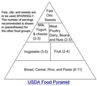 Food Pyramid Boring