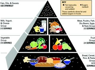 Food Pyramid Wrong Message
