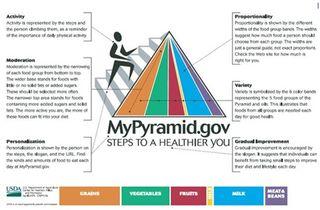 Food Pyramid Complex