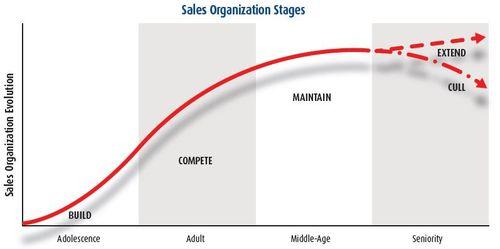 Why Sales Organizations Fail Steve W Martin