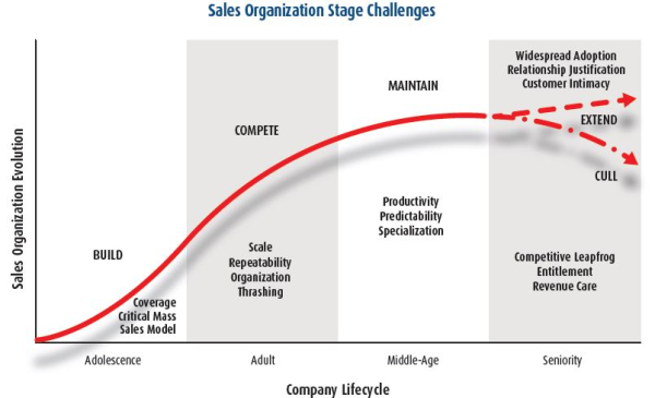 Steve W Martin Sales-Stage-Challenges