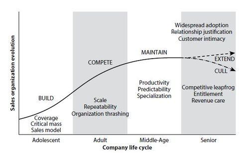 Steve W Martin Sales Organization Challenges